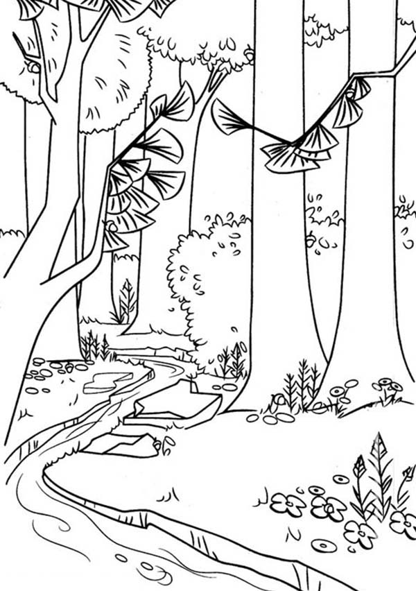 Oliver and Company, : Timber National Forest in Open Season Coloring Pages