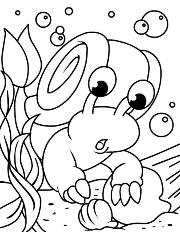 Neopets, : Under Water Neopets Found an Oyster Coloring Pages