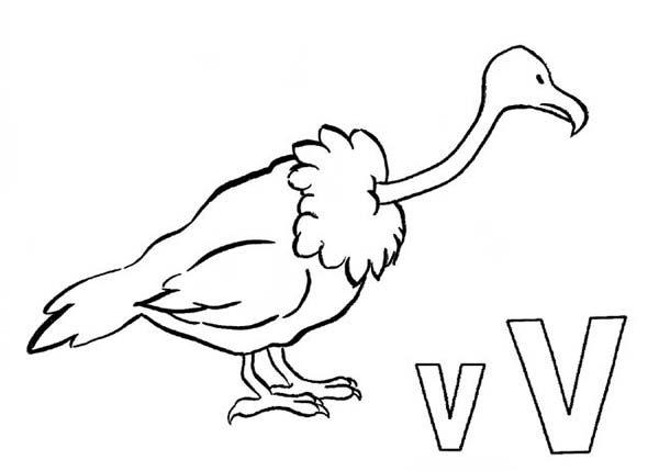 Letter V, : LEAD Technologies Inc. V1.01