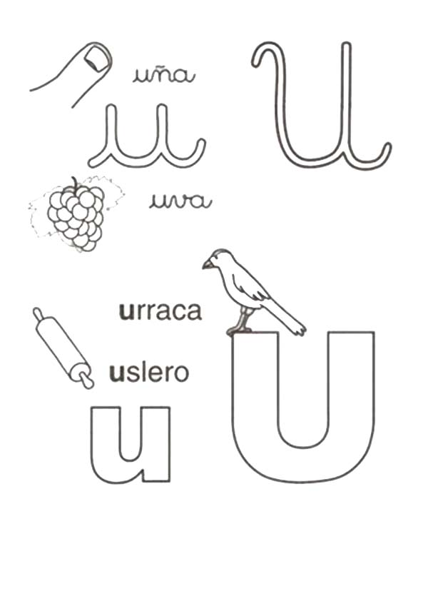 Letter U, : Words Comes from Letter U Coloring Page