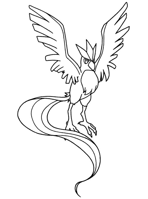 Pokemon, : Bird Type Pokemon Coloring Pages