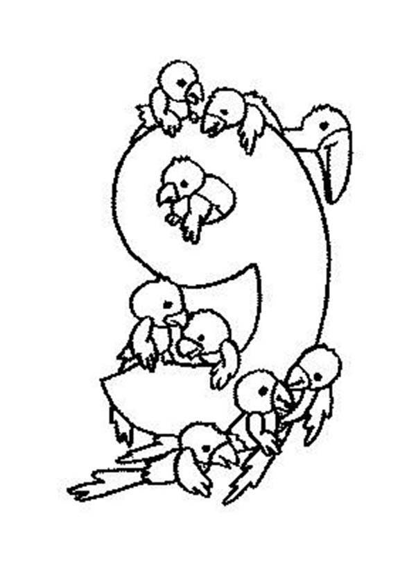 Number 9, : Count the Bird to Number 9 Coloring Page