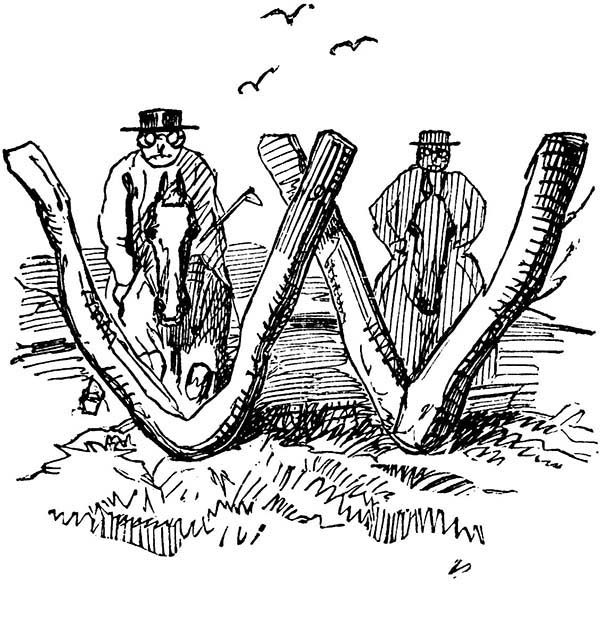 Letter W, : Initial Letter W Coloring Page