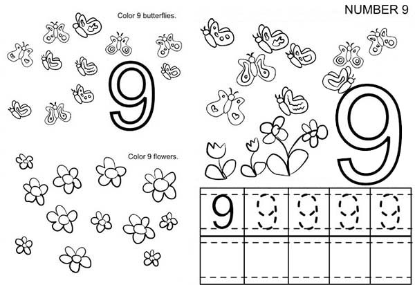 Number 9, : Kindergarden Kids Learn Number 9 Coloring Page