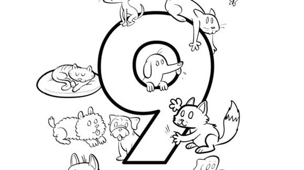 Number 9, : Learn Number 9 with Nine Different Animals Coloring Page
