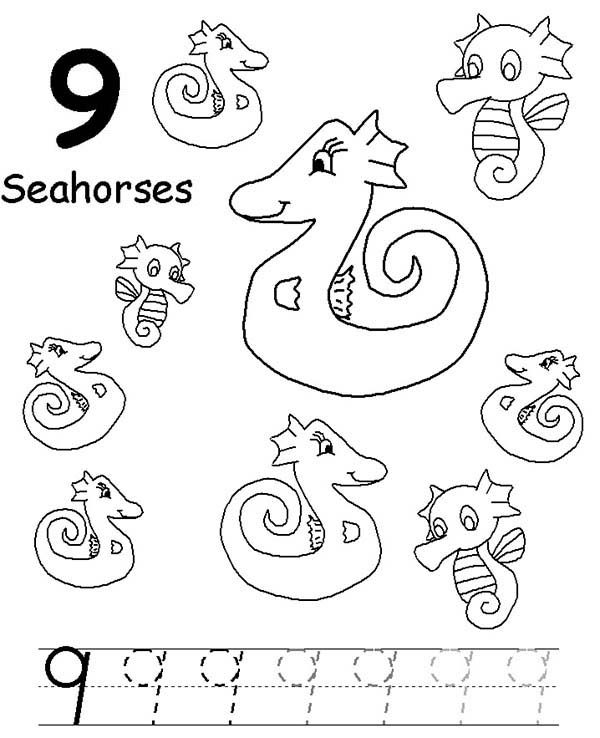 Number 9, : Learn Number 9 with Nine Seahorses Coloring Page