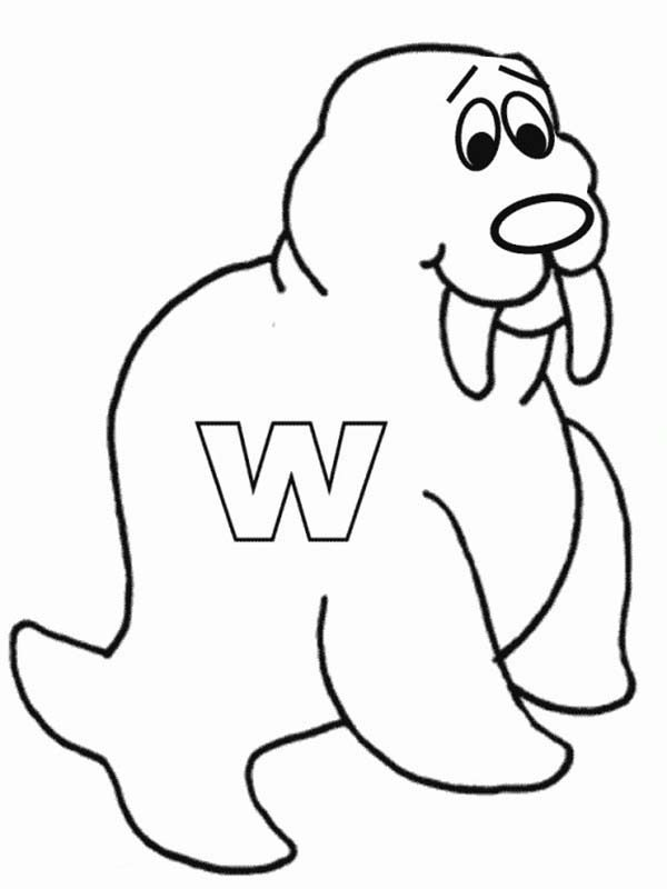 Letter W, : Letter W is for Walrus Coloring Page