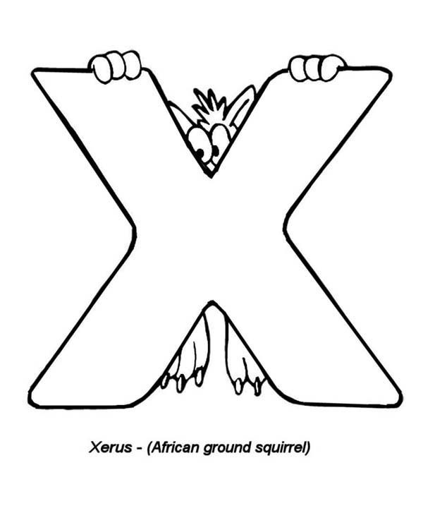 Letter X, : Xerus the African Ground Squirel for Letter X Coloring Page