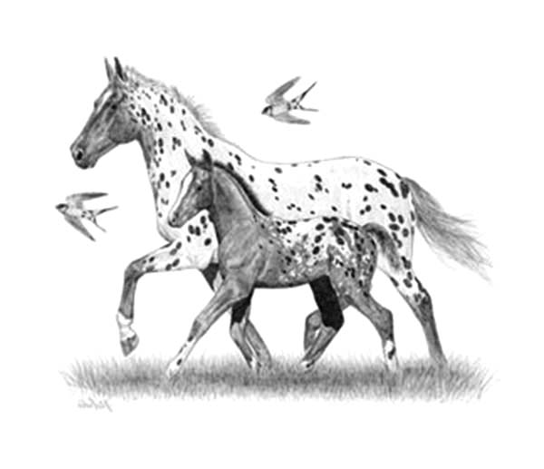 Appalooshorse, : Appalooshorse Mother Teach Her Baby Walking Coloring Pages