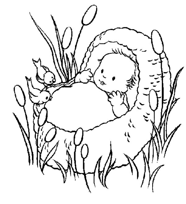 Babies, : Babies Moses Talking to Birds Coloring Pages