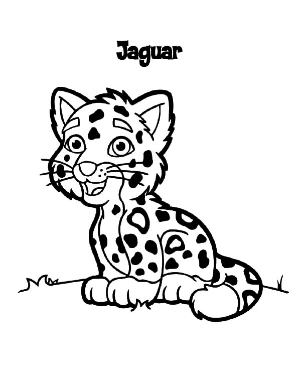 Jaguar, : Jaguar Junior Coloring Pages