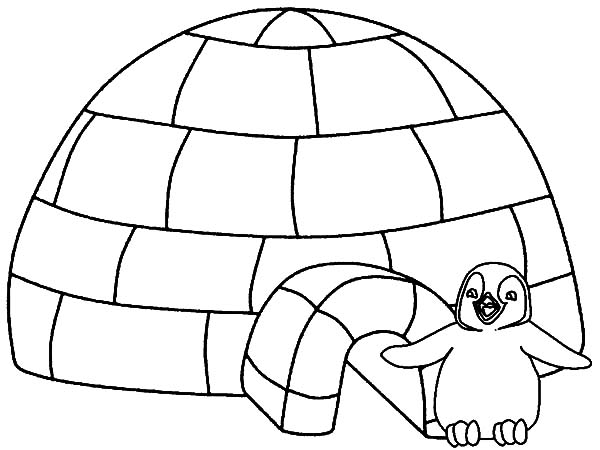 Igloo, : Little Penguin Igloo House Coloring Pages